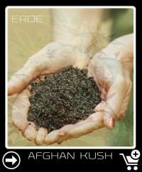 Erde vor Afghan Kush