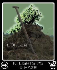 Dünger vor Northern Lights 5 X Haze