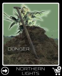 Dünger vor Northern Lights