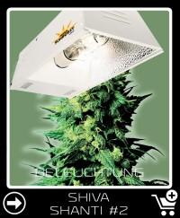 Welche Beleuchtung für Shiva Shanti 2