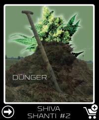 Dünger vor Shiva Shanti 2