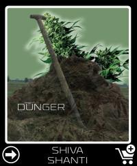 Dünger vor Shiva Shanti
